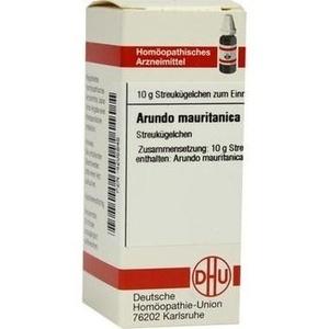 ARUNDO MAURITAN C 6
