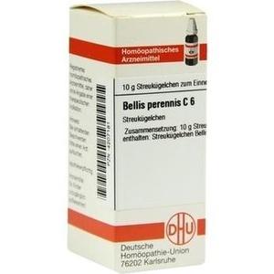 BELLIS PERENNIS C 6