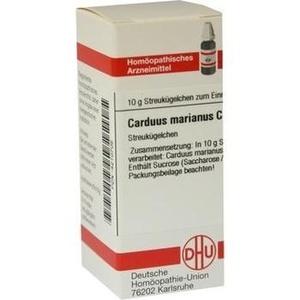 CARDUUS MAR C30