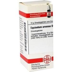 EQUISETUM ARV D 4