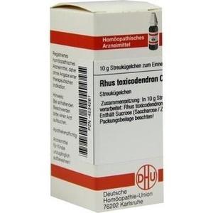 RHUS TOXICODENDRON C 1000 Globuli