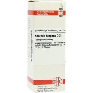 ADLUMIA fungosa D 3 Dilution