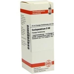 SCOLOPENDRIUM D 60 Dilution