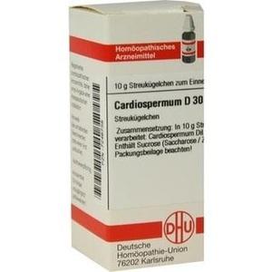 CARDIOSPERMUM D30