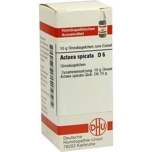 ACTAEA SPIC D 6