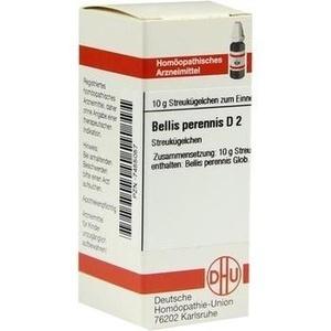 BELLIS PERENNIS D 2