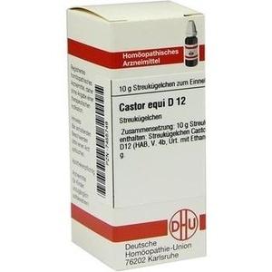CASTOR EQUI D12