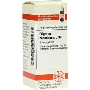 ERIGERON CANADENSIS D 30 Globuli