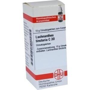 LACHNANTHES tinctoria C 30 Globuli