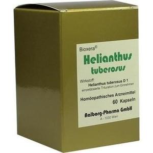HELIANTHUS TUBEROSUS KAPSELN