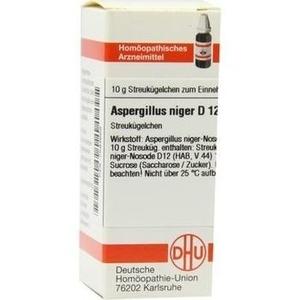 ASPERGILLUS NIGER D12