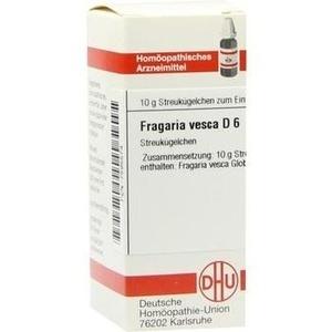 FRAGARIA VESCA D 6