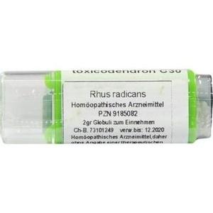 Rhus Toxicodendron C30 Globuli