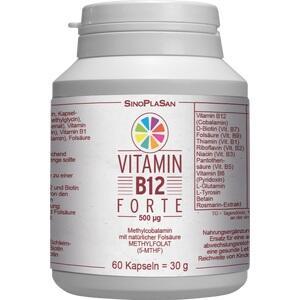 VITAMIN B12 FORTE 500 μg Methylcobalamin Kapseln