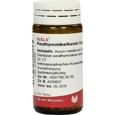 berberis prostata comp wala fiales