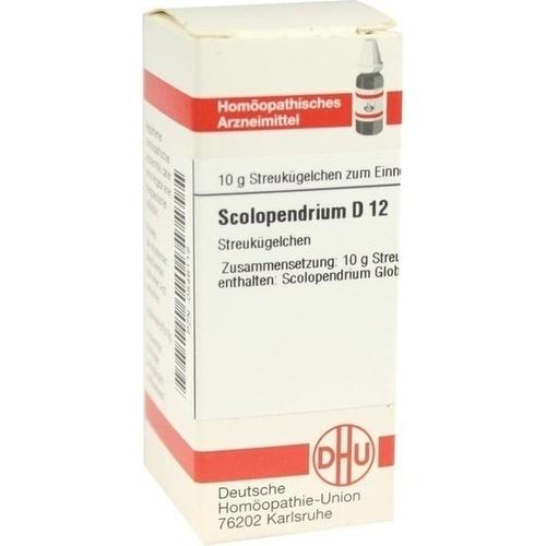 SCOLOPENDRIUM D 12 Globuli