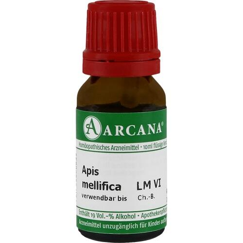 APIS MELLIFICA LM 6 Dilution