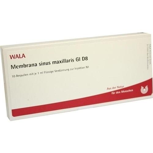 MEMBRANA sinus maxillaris GL D 8 Ampullen