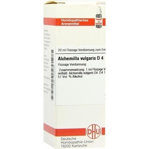 ALCHEMILLA VULG D 4