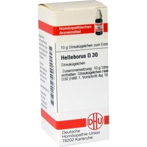 HELLEBORUS D30