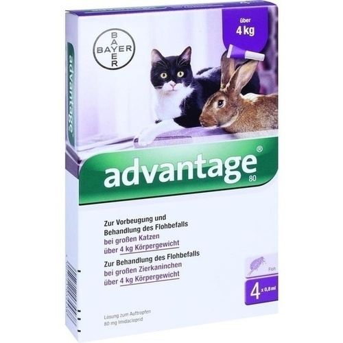 ADVANTAGE 80 mg f.gr.Katzen u.gr.Zierkaninchen