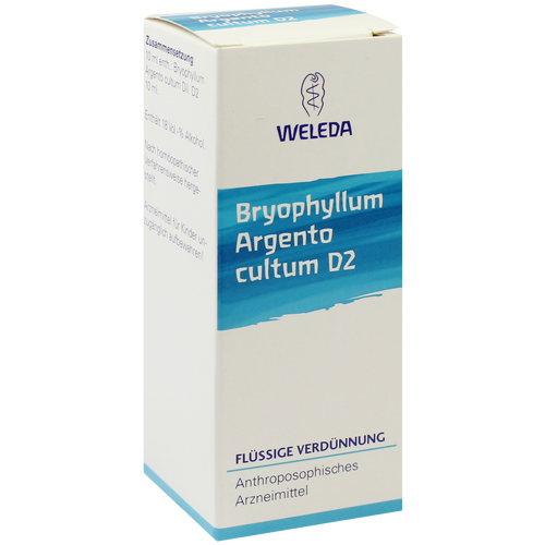 BRYOPHYLLUM ARGENTO cultum D 2 Dilution
