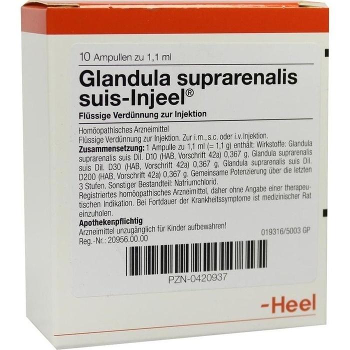 GLANDULA SUPRARENALIS suis Injeel Ampullen