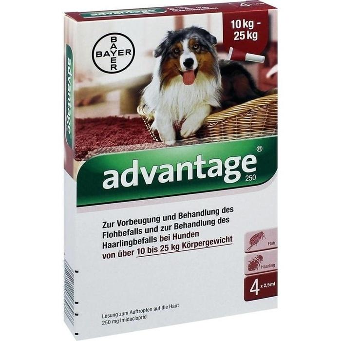 ADVANTAGE 250 Lösung f.Hunde 10-25 kg